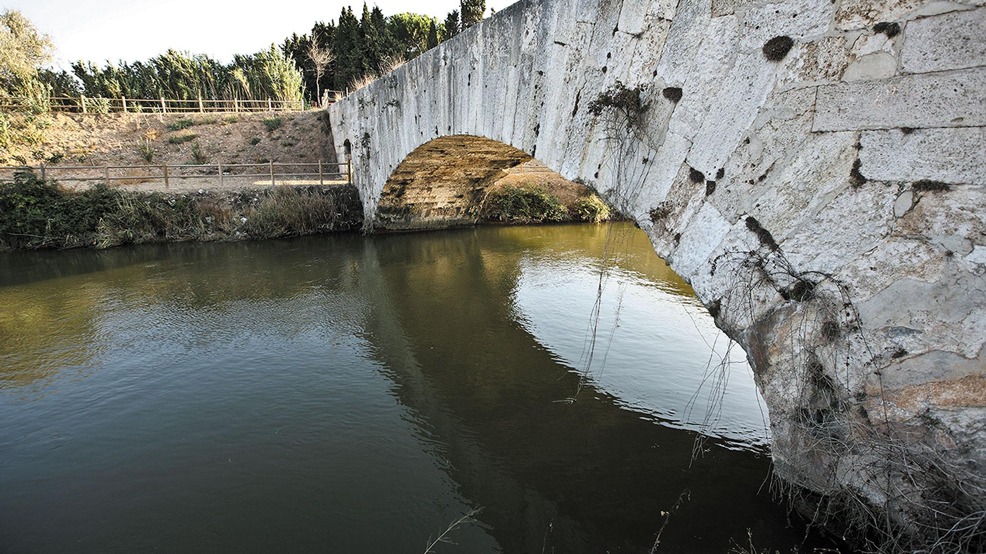 Figueruelas puente