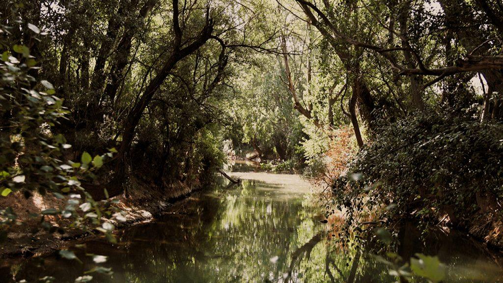 Río en Pleitas