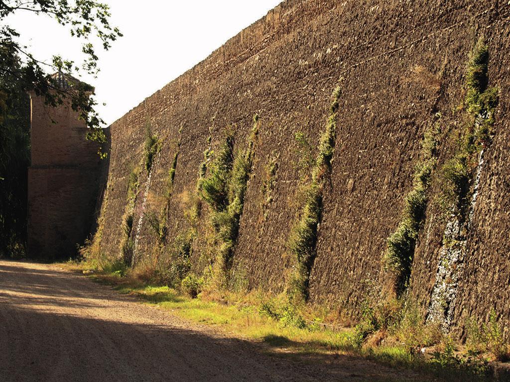 Muralla de Grisén en el paraje natural de El Caracol.