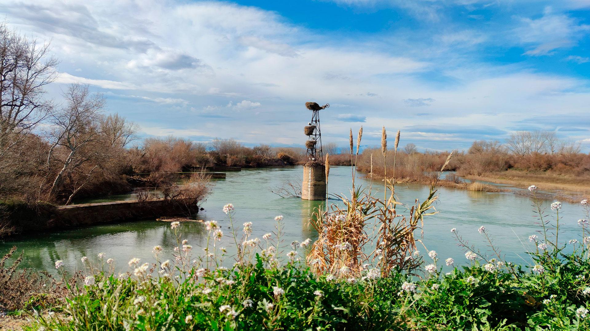 Río Ebro Alcalá de Ebro