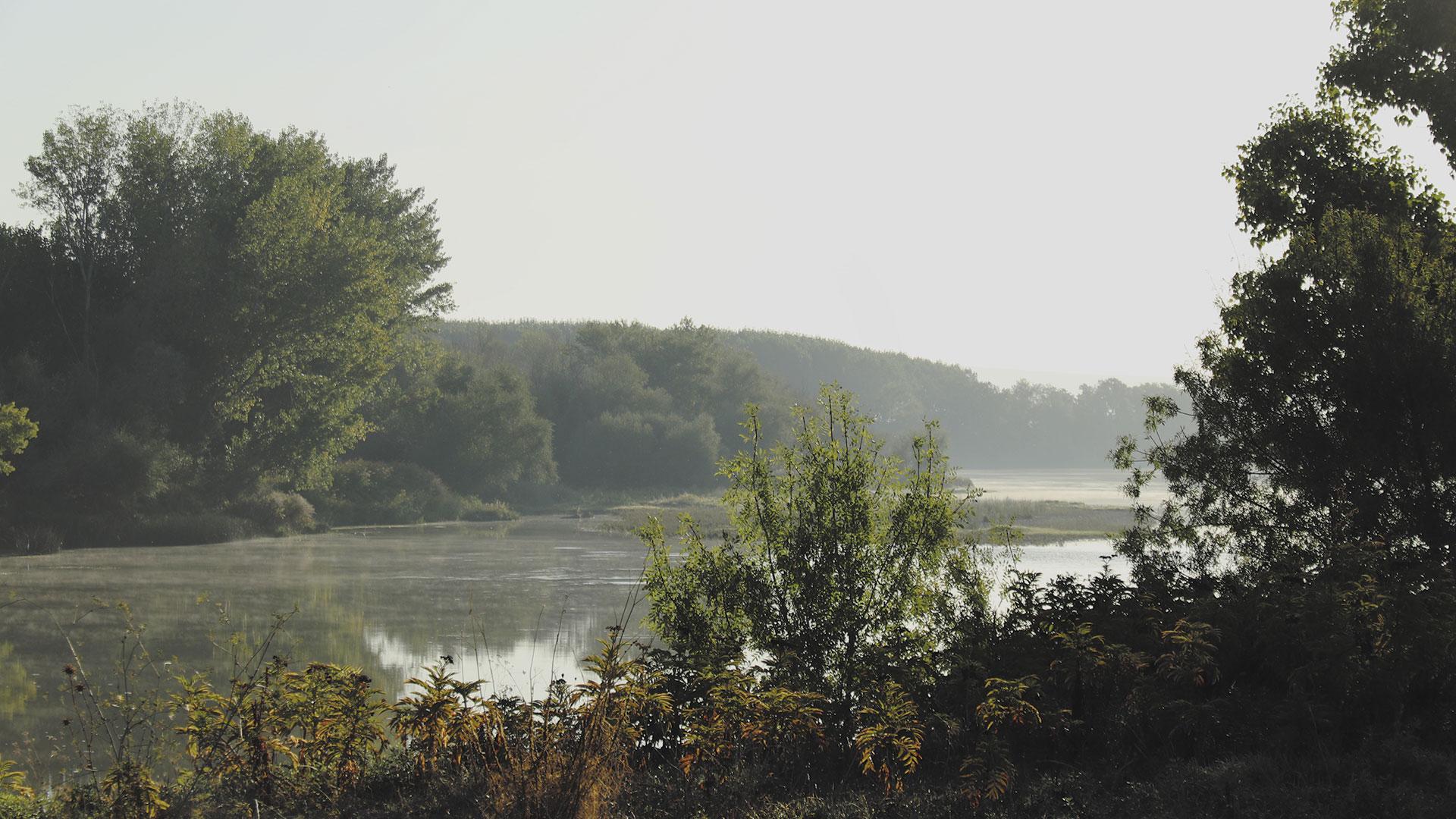 Sol sobre el río Ebro y la flora en Luceni