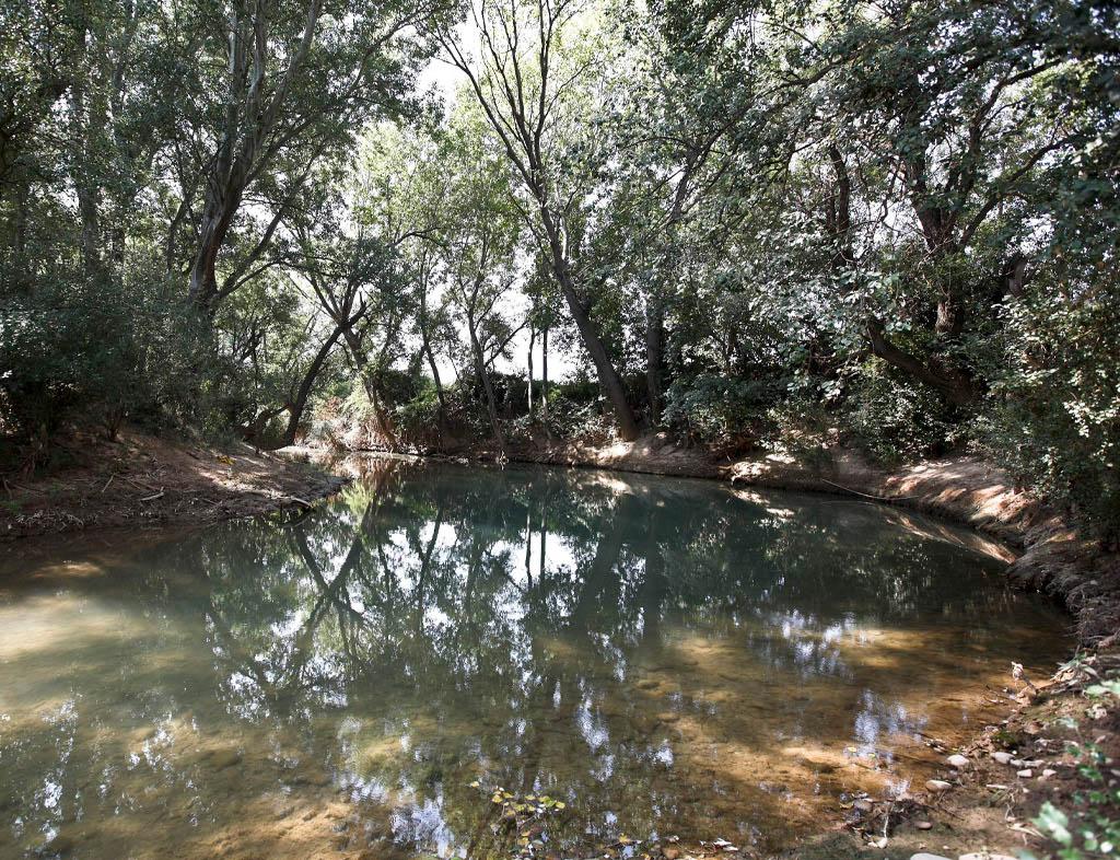 Río y ribera con arbolada.