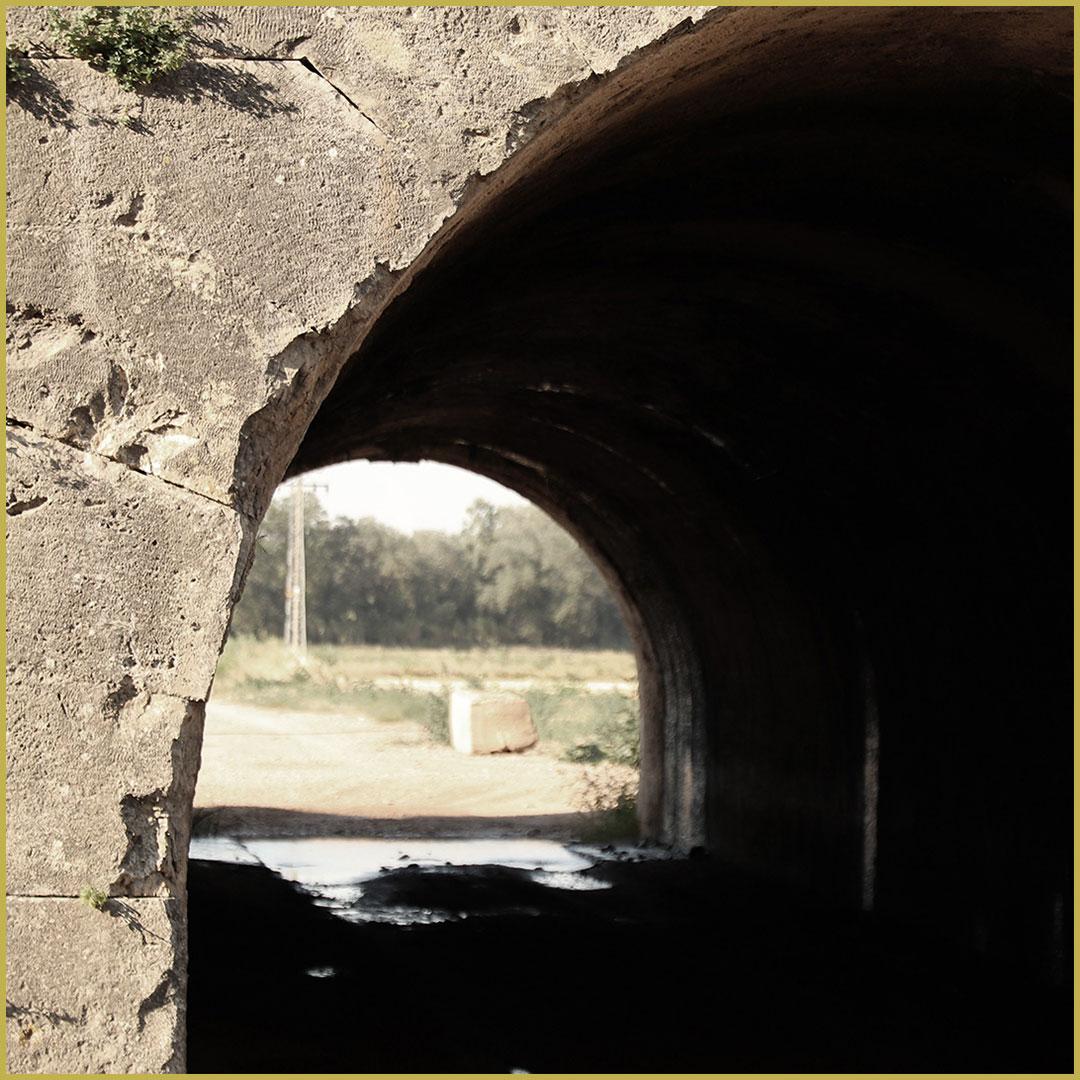 Imagen Grisén en la comarca en imágenes