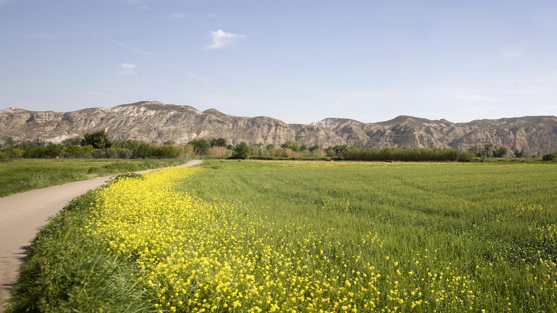 Rutas y senderos en la Ribera Alta del Ebro