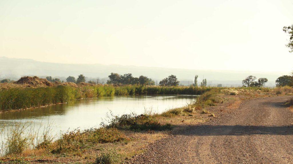 El Canal Imperial de Aragón a su paso por Luceni.