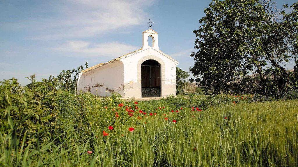 paisaje verde y florado con la ermita de Sobradiel de fondo